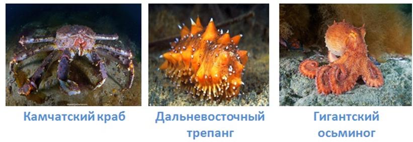 25 vodnye obekty rossii